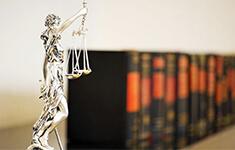 学习十九大精神:从律师的社会责任做起